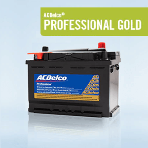 ACDelco Professional Gold